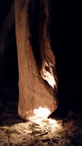 fire in wood on beach